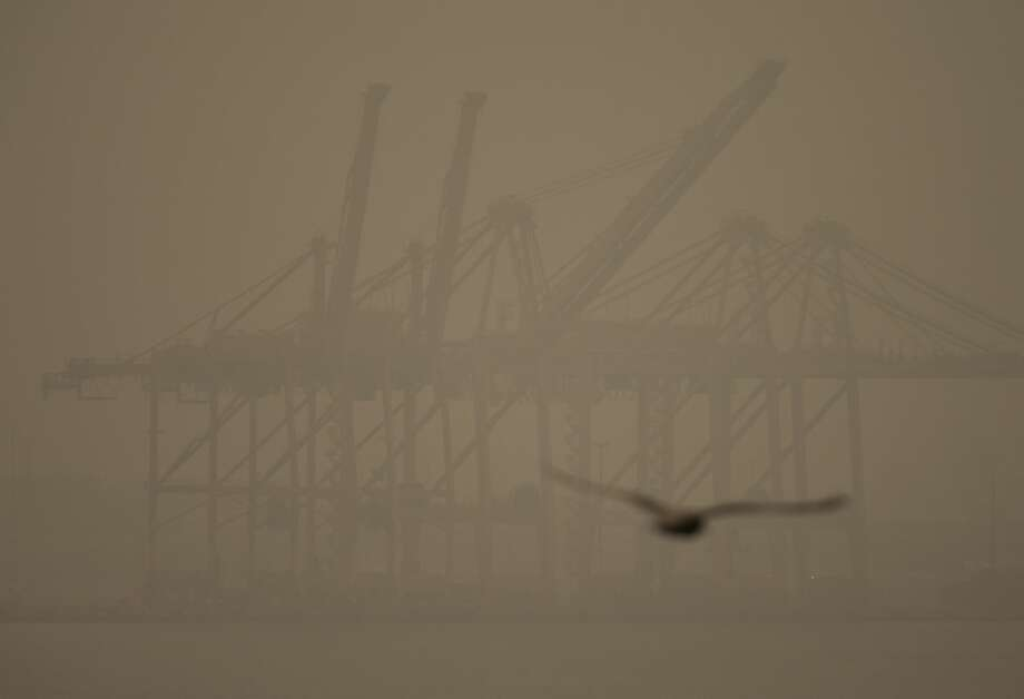 "SEATTLE, WA - SEPTEMBER 12: A seagull flies past cranes on Harbor Island as smoke from wildfires fills the air on September 12, 2020 in Seattle, Washington. According to the National Weather Service, the air quality in Seattle remained at ""unhealthy"" levels Saturday after a large smoke cloud from wildfires on the West Coast settled over the area. (Photo by Lindsey Wasson/Getty Images) Photo: Lindsey Wasson/Getty Images / 2020 Getty Images"
