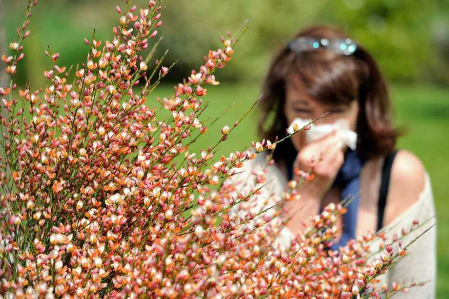 It can be easy to confuse benign but annoying fall allergies with symptoms of the potentially deadly COVID-19 virus. Photo: Philippe Huguen /Getty Images