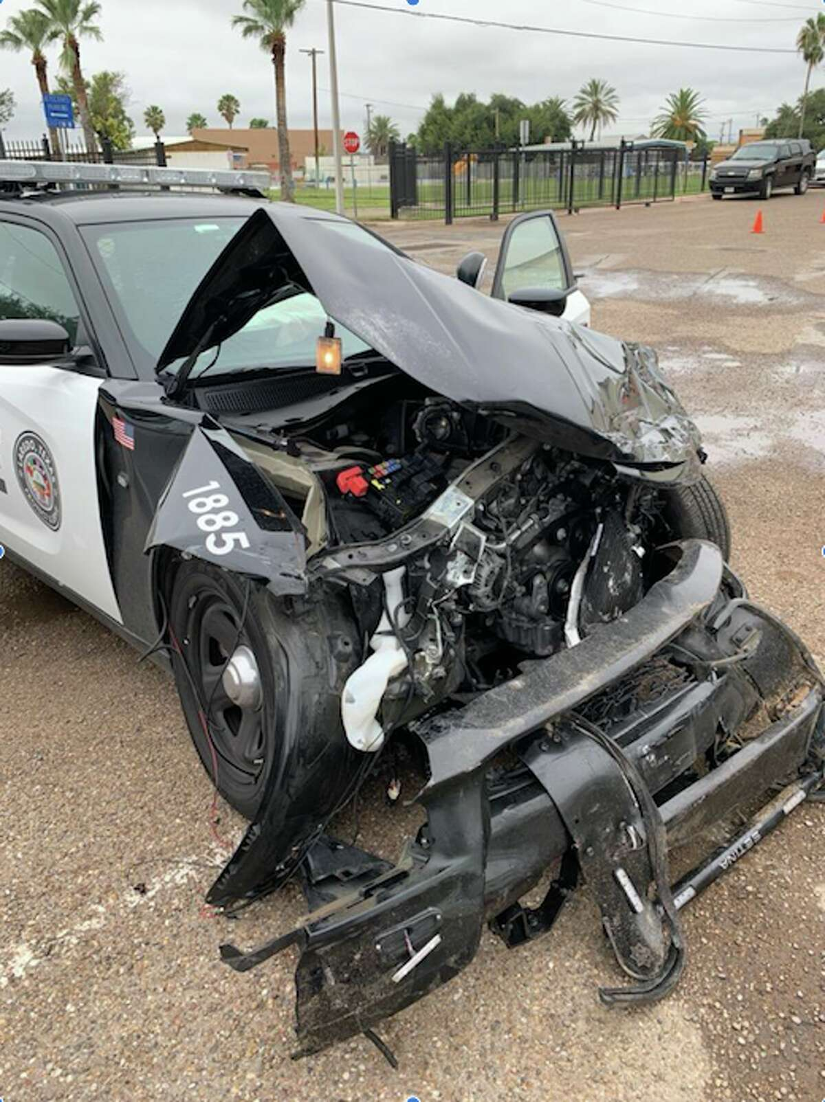 An LPD patrol vehicle was crashed into headfirst by a driver who was transporting two undocumented immigrants on Thursday.