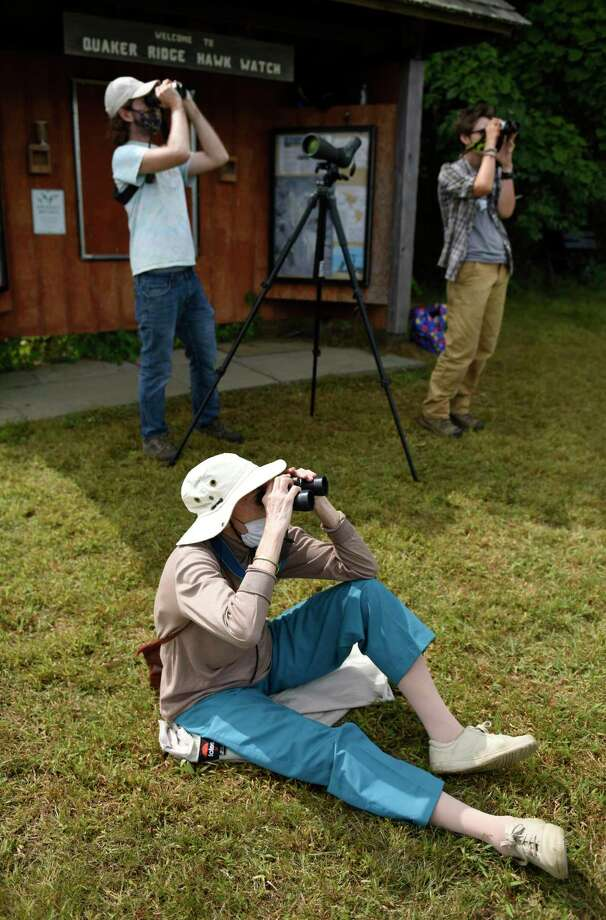 Rita Freed, of Bronx, N.Y., looks through binoculars to count hawks as they pass through Greenwich migrating south for the winter at Greenwich Audubon Center in Greenwich, Conn. Monday, Sept. 14, 2020. Hawk watchers have been out in socially-distant, masked groups since the beginning of September and will continue the watch through the end of November. Raptor migration will peak in the next few weeks and numbers in the thousands are commonly spotted on clear days with northwest winds. Photo: File / Tyler Sizemore / Hearst Connecticut Media / Greenwich Time