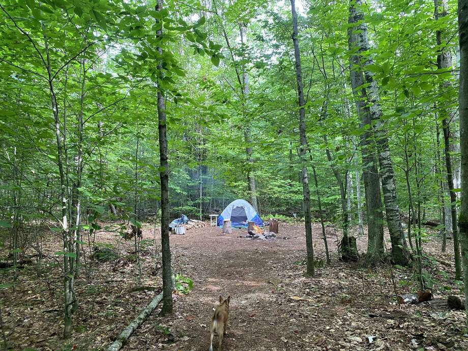 Natalie Compton's campsite on Saturday, Sept. 12, 2020, in Colebrook, Conn. Photo: Washington Post Photo By Natalie Compton / The Washington Post