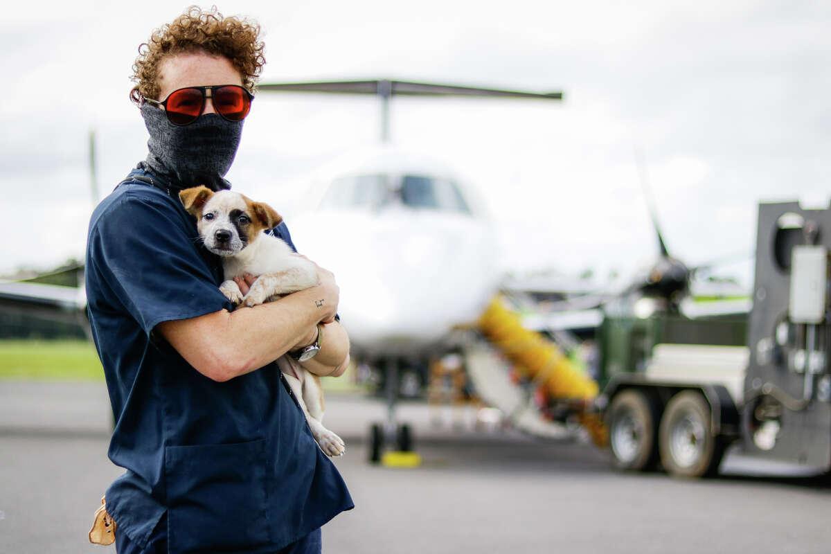 Today the Houston SPCA headed to Louisiana to evacuate animals ahead of Hurricane Delta.