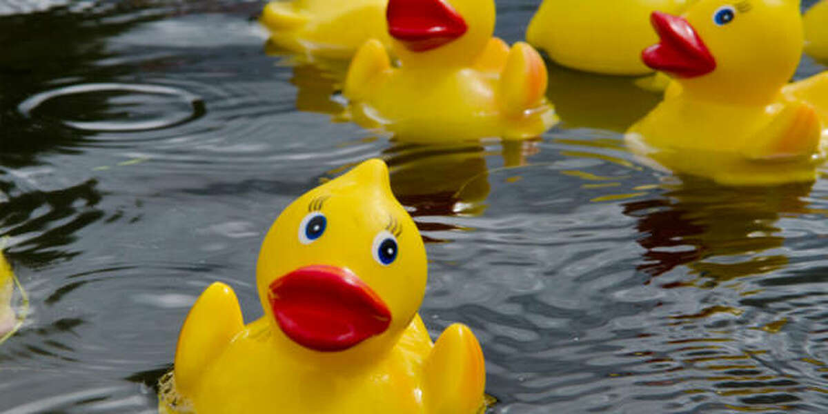 The 4th Annual Calhoun County Duck Race is planned Sunday, Oct. 4, in Hardin. More than 1,000 ducks have already been sponsored for this year's event.