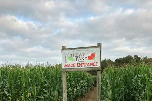 The entrance to the Treat Family Farm corn maze in Orange.