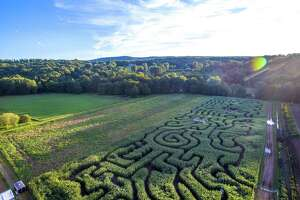 A view of the sea-themed corn maze at The Farm in Woodbury.