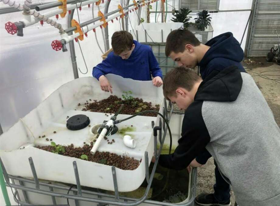 North Huron students working on their aquaponics systems. The program is aimed at teaching students new ways of raising plants and animals. (Courtesy Photo/North Huron Schools)