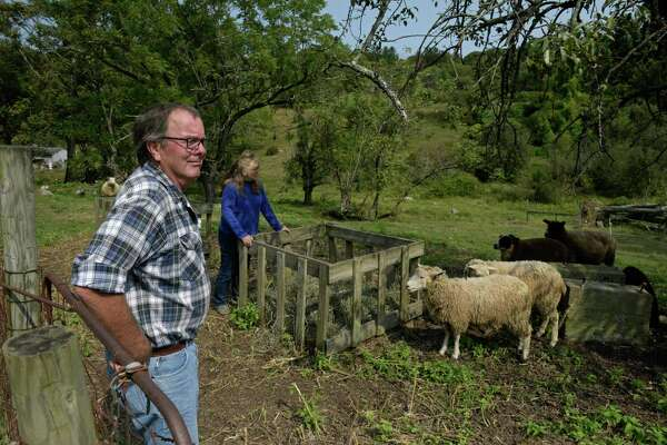 Cathleen and Howard Bronson, of Maple Bank Farm in Roxbury, Conn, have been helped by the Northwest Connecticut Land Conservancy navigating the state's Farmland Preservation Program. Wednesday, September 16, 2020.