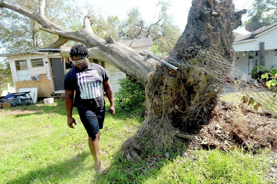 """Darby Jones walks in the backyard near the tree that crashed into his family's home in Orange during Hurricane Laura last month. They are staying in a hotel, returning home to clear the debris, clothes and furniture destroyed, and to await whatever help they can get to make repairs. Reese also lost large freezers filled with over a thousand dollars worth of ice cream, which she sells out of her ice cream truck. She doesn't expect to be able to work for the remainder of the year. Despite their losses, she and her children, including older son Jarriod Reese, whose bedroom took the direct hit from the fallen tree, are glad that they chose to evacuate. """"Things we can replace. You can't replace a life,"""" she says. Photo taken Thursday, September 10, 2020 Kim Brent/The Enterprise Photo: Kim Brent / The Enterprise / BEN"""