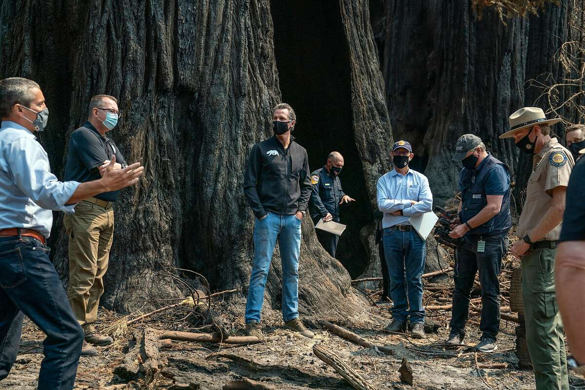 Governor Gavin Newsom, center, listens as Secretary of California Natural Resources Agency Wade Crowfoot, left, talks about the fire damage to Big Basin Redwoods State Park on Tuesday, Sept. 1, 2020 in Boulder Creek, Calif.