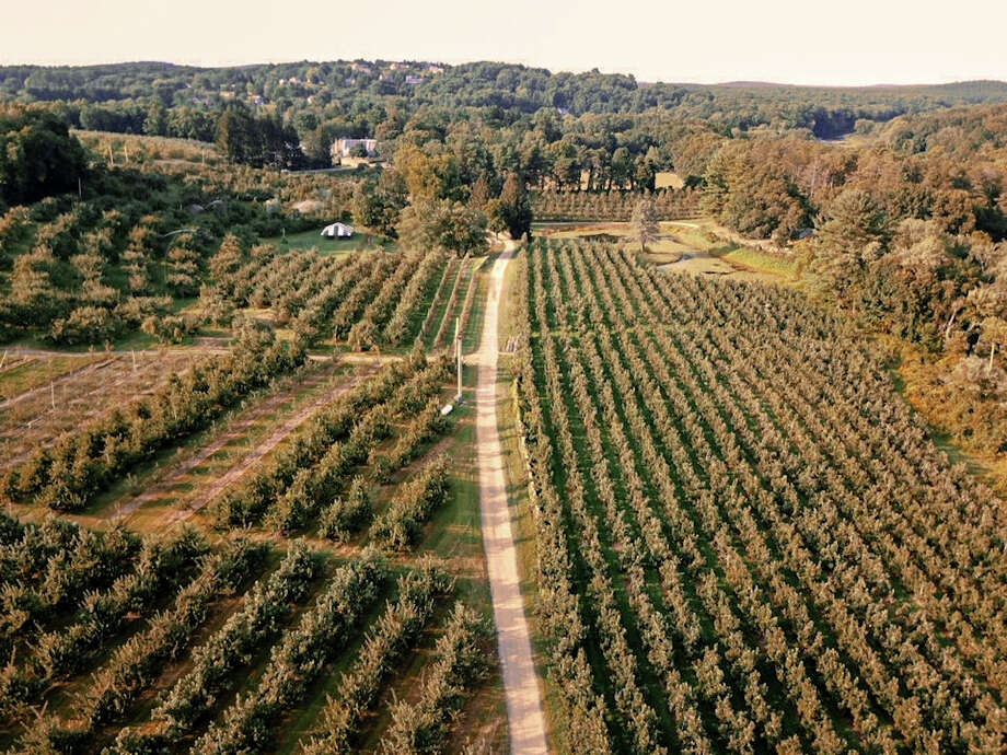 Honey Pot Hill Orchards in Stow, Mass., will be open this fall despite covid. Photo: Honey Pot Hill Orchards / Courtesy of Honey Pot Hill Orchards