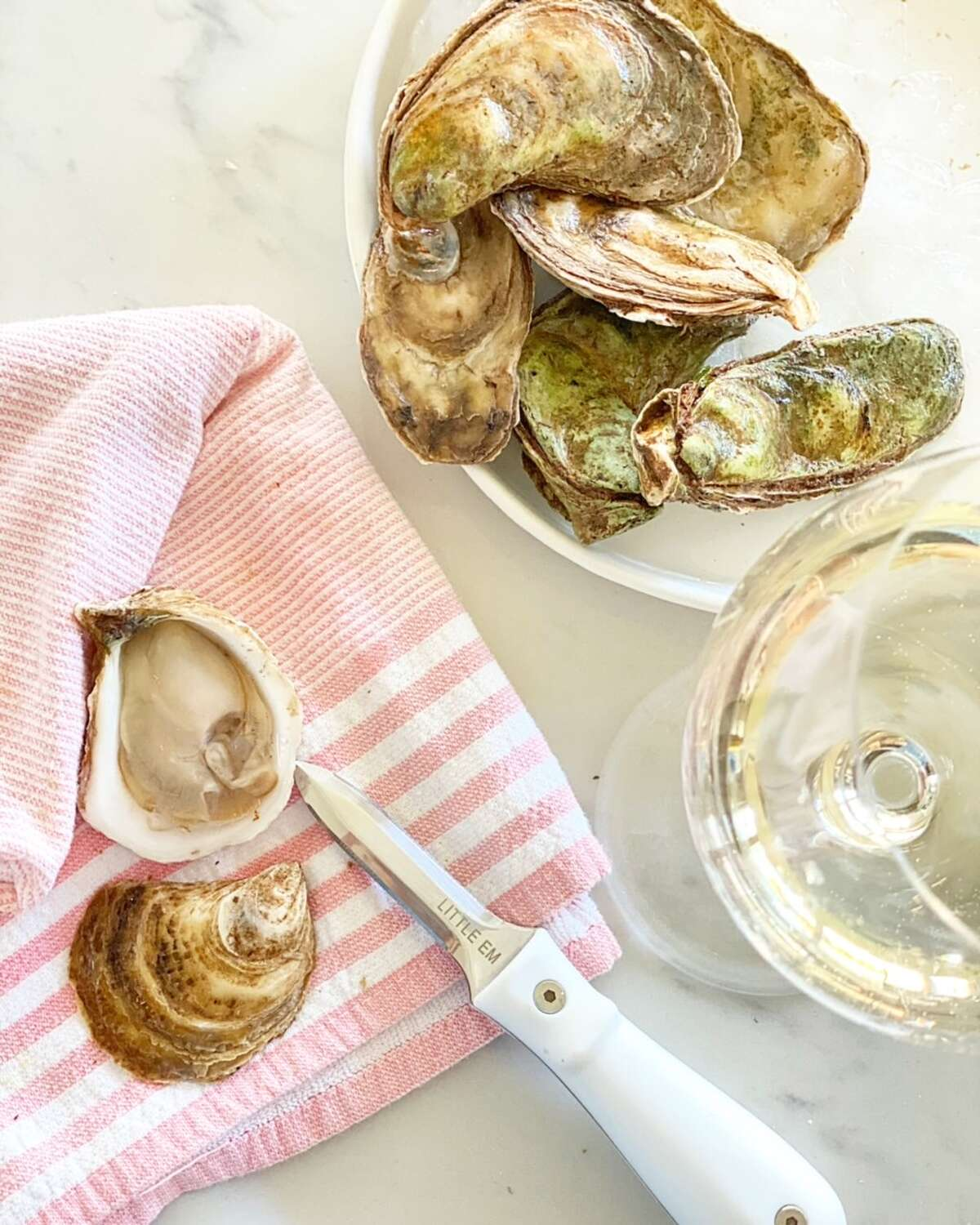 """""""I'm such a huge foodie and oysters have always been at the top of the list,"""" Emily Carpenter said. """"We've traveled all over the world and fallen in love with oysters. We will be tasting them before we give them to our customers to make sure they're fabulous and high quality."""""""