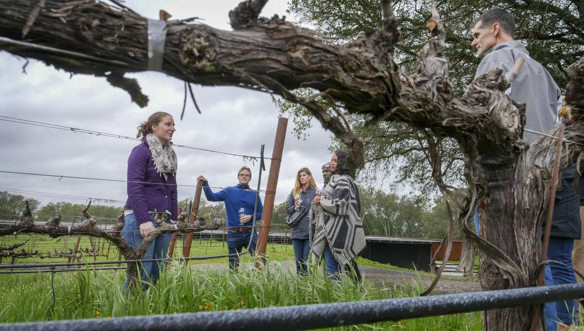 Brand Ambassabor Amanda Gagnon walks guests through the vineyards as a part of their tasting tour at the Chappellet Winery, Tuesday March 6, 2019, in St. Helena, Calif.