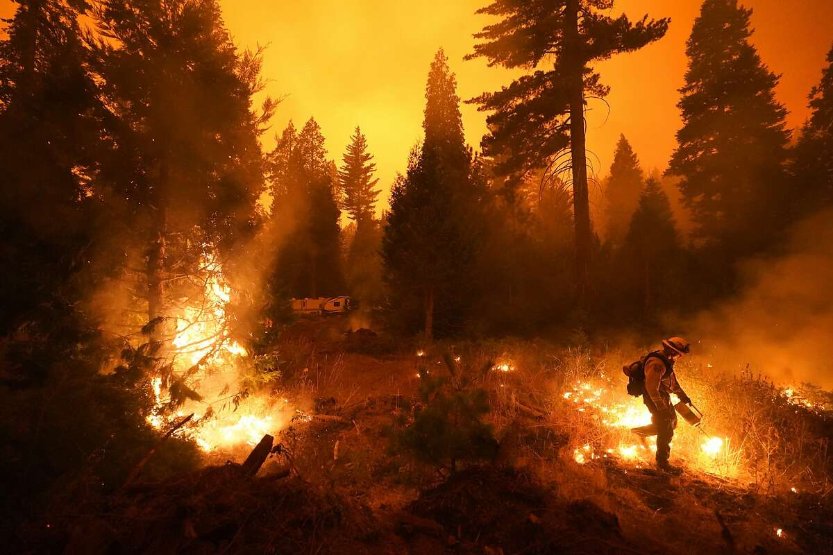 Firefighter Ricardo Gomez, of a San Benito Monterey Cal Fire crew, sets a controlled burn with a drip torch while fighting the Creek Fire, Sunday, Sept. 6, 2020, in Shaver Lake, Calif. Firefighters trying to contain the massive wildfires in Oregon, California and Washington state are constantly on the verge of exhaustion as they try to save suburban houses, including some in their own neighborhoods. (AP Photo/Marcio Jose Sanchez)