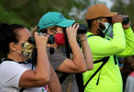 Joanne Bradbury, left to right, Anna Valley, and Royce Daniels use their binoculars to spot birds, during a bird walk at Spring Creek Nature Trails on Saturday, Sept. 19, 2020, in Tomball, Texas. The event kicked off Houston Bird Week.