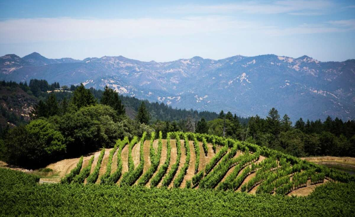 Pride Mountain has a one-of-a-kind location: split down the middle, with one half of the property in Napa County and the other in Sonoma County.
