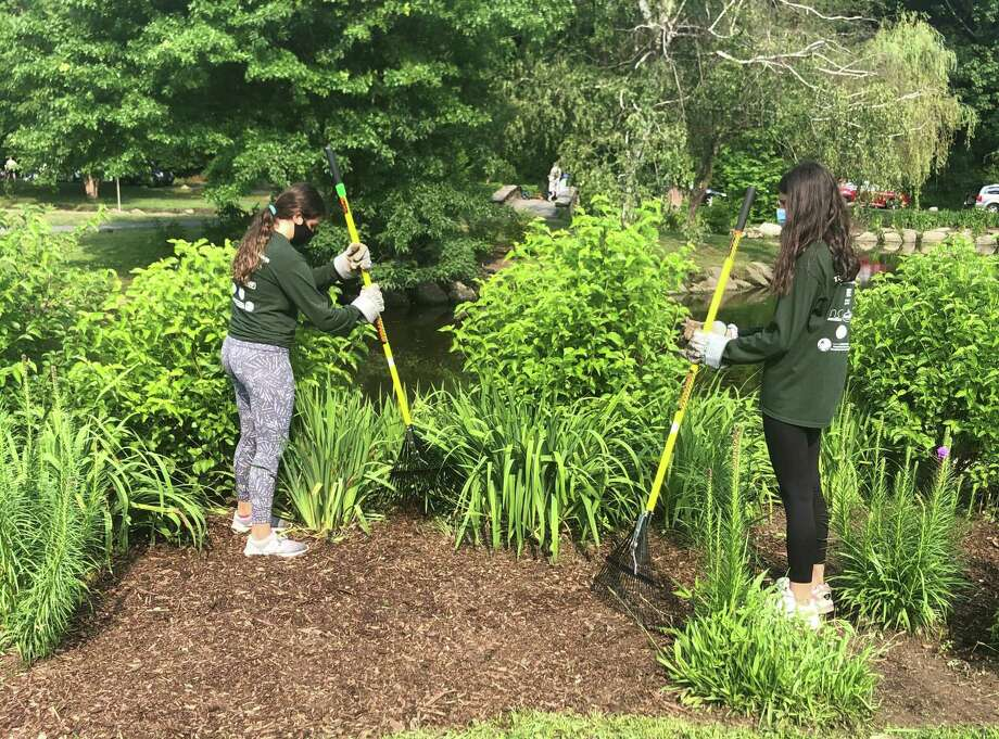 Teens in the Greenwich Youth Conservation Program work on a project at Binney Park over the summer. Photo: Contributed / Greenwich Youth Conservation Program /