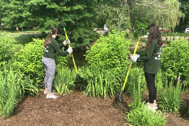 Teens in the Greenwich Youth Conservation Program work on a project at Binney Park over the summer.