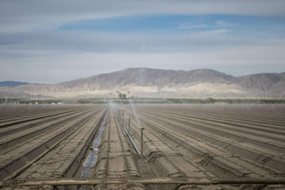 FILE - Irrigation equipment in Coachella, Calif., Jan. 28, 2019. The same manufactured landscapes that have enabled California�s tremendous growth, building the state into a $3 trillion economy that is home to one in 10 Americans, have also left it more exposed to climate shocks, experts say. (Mette Lampcov/The New York Times)