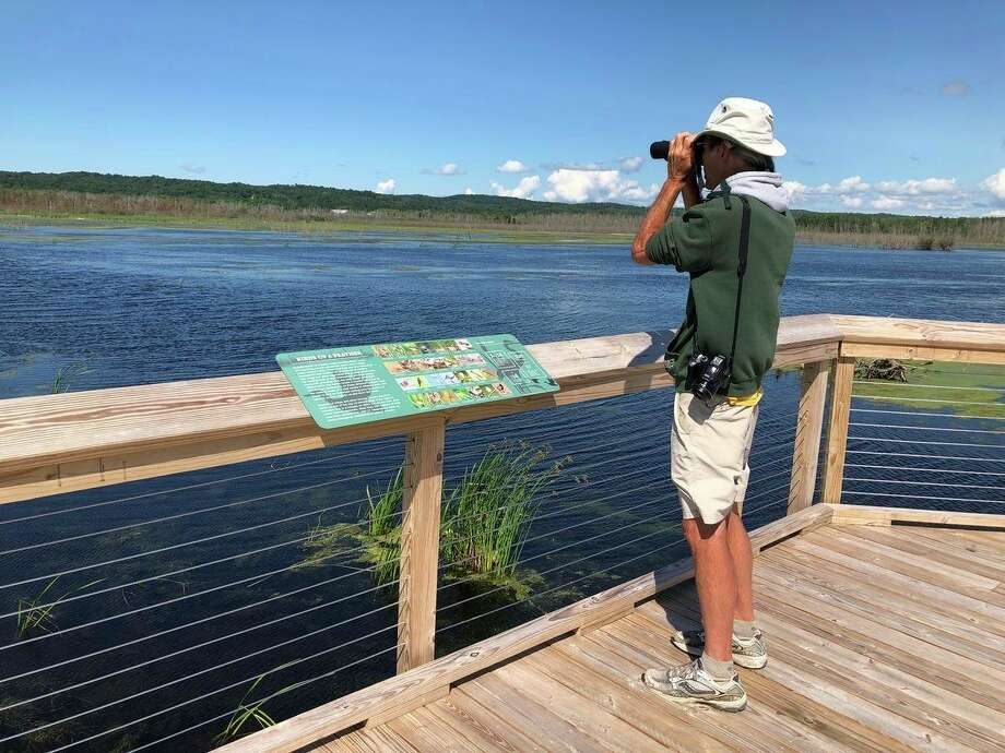 Birder Brian Allen looks out at Arcadia Marsh. (Photo/Cassidy Hough)