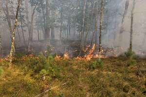 A brush fire in North Windham, Conn., on Wednesday, Sept. 16, 2020.