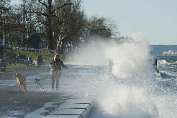Woman determined to walk her dogs ignores wind and freezing spray, West Seattle, WA