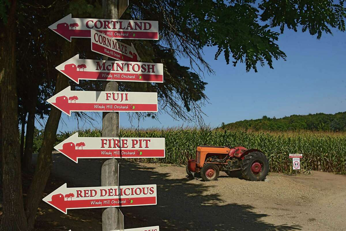 Signs for apple trees and a corn maze are at Windy Hill Orchard on Tuesday, Sept. 22, 2020 in Castleton, N.Y. (Lori Van Buren/Times Union)