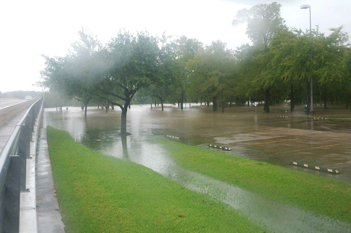 Countryside Park off Bay Area Boulevard in League City was closed because of flooding. City authorities said a giant glob of floating ants had been spotted and warned people not to wade into the murky water.