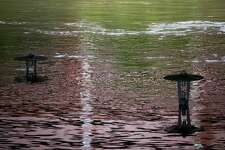 Light posts under Buffalo Bayou water during Tropical Storm Beta, Tuesday, Sept. 22, 2020, in Houston.