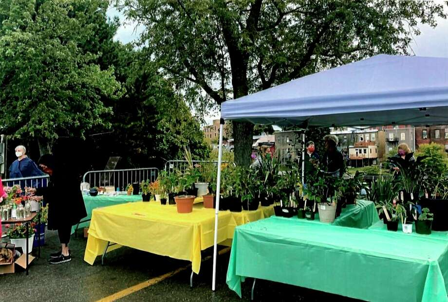 The Spirit of the Woods Garden Club held its annual plant sale on Sept. 5 at the Manistee Farmers Market, offeringperennial plants, packets of seeds, fresh cut flowers and lavender sachets. (Courtesy photo)