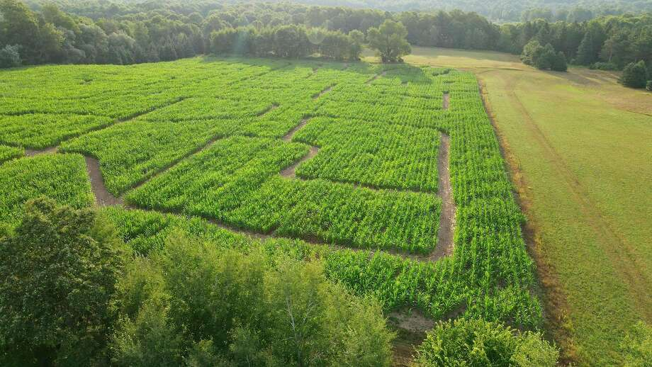 The family-friendly corn maze at Four Green Fields Farm will be open on Saturdays and Sundays from Sept. 26 through Nov. 1. Pictured is a drone view of last year's maze. (Courtesy photo)