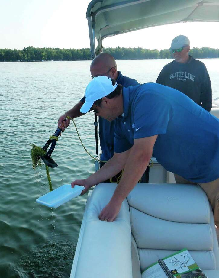Volunteers sample aquatic vegetation on Big Plate Lake to take inventory of what species are populating the lake and to monitor for invasive species. (Courtesy photo)
