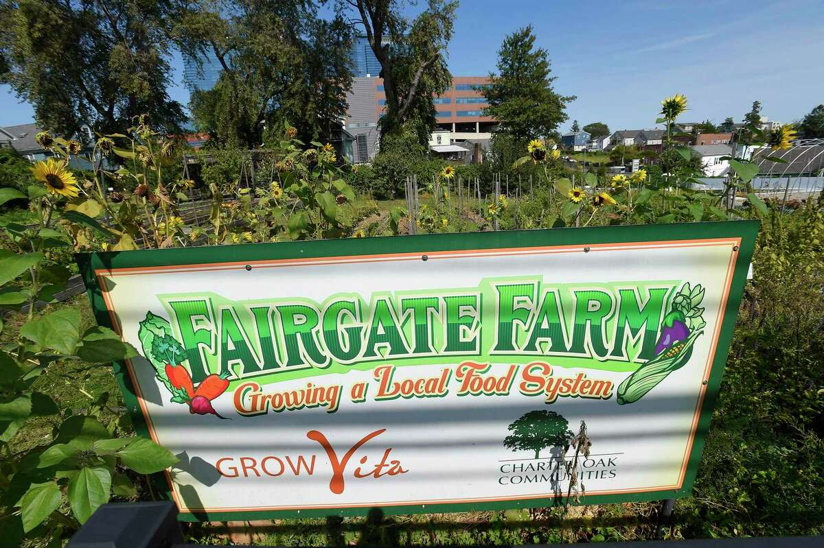 """The AARP has awarded Stamford's Fairgate Farm, shown in a photograph taken on Sept. 22, 2020 in Stamford, Connecticut, a $9,800 """"Community Challenge"""" grant for the development of an ADA-compliant walkway through the Farm along with a bicycle rack, benches, picnic tables and elevated raised garden beds to provide a space to garden for people of all ages and abilities. According to Vincent Tufo, chief executive officer of Charter Oak Communities, """"This grant will allow us to expand our public, urban farm in Stamford, creating improved access to the Farmers Market and pergola, which serves as an outdoor classroom and community gathering space."""" Fairgate Farm, located at 129 Stillwater Avenue in the West Side neighborhood of Stamford, is among 184 grantees selected from across all 50 states, Washington D.C., Puerto Rico and the U.S. Virgin Islands."""