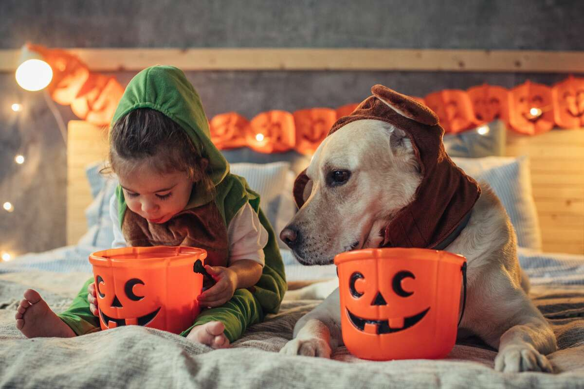 Some Bay Area county health officials have laid out restrictions on Halloween activities this year.