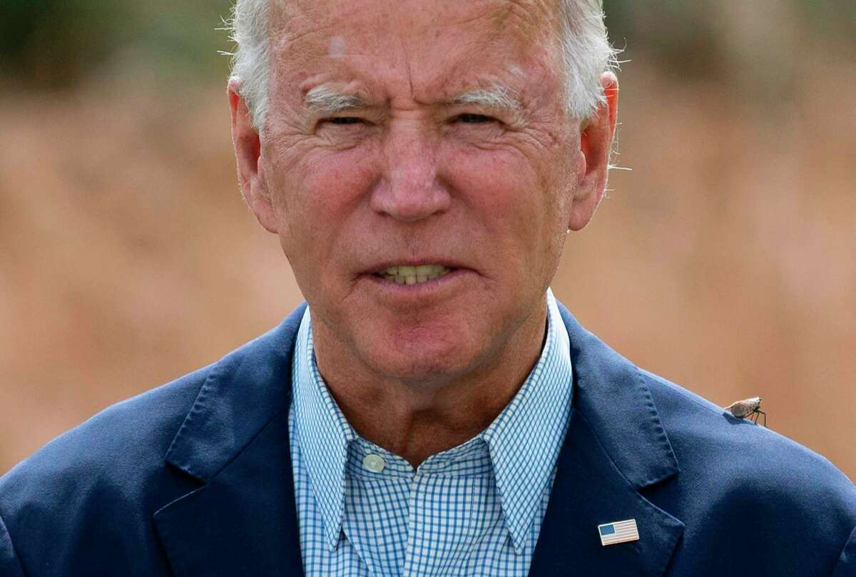 A Spotted Lanternfly, an invasive fly that destroys fruit trees and common crops, lands on the shoulder of Democratic presidential candidate Joe Biden as he spoke about ongoing wildfires and the urgent need to address the climate crisi outside the Delaware Museum of Natural History in Wilmington, Delaware, on September 14.