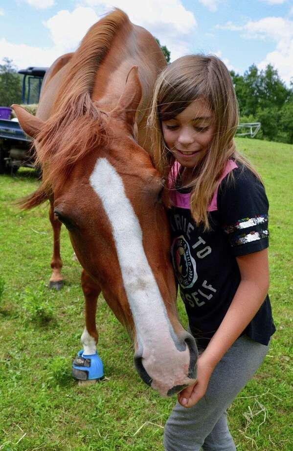 """The Humane Organization Representing Suffering Equines (H.O.R.S.E. of Connecticut) will have its annual """"Basic Horse Care Clinic"""" in Washington, Oct. 3. Photo: Contributed Photo"""