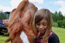 """The Humane Organization Representing Suffering Equines (H.O.R.S.E. of Connecticut) will have its annual """"Basic Horse Care Clinic"""" in Washington, Oct. 3."""