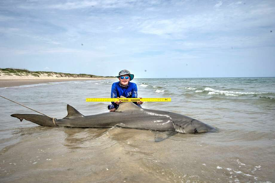 Nick Fuller from the Houston-area reeled in the shark from the shore on July 12, 2019. Photo: Nick Fuller