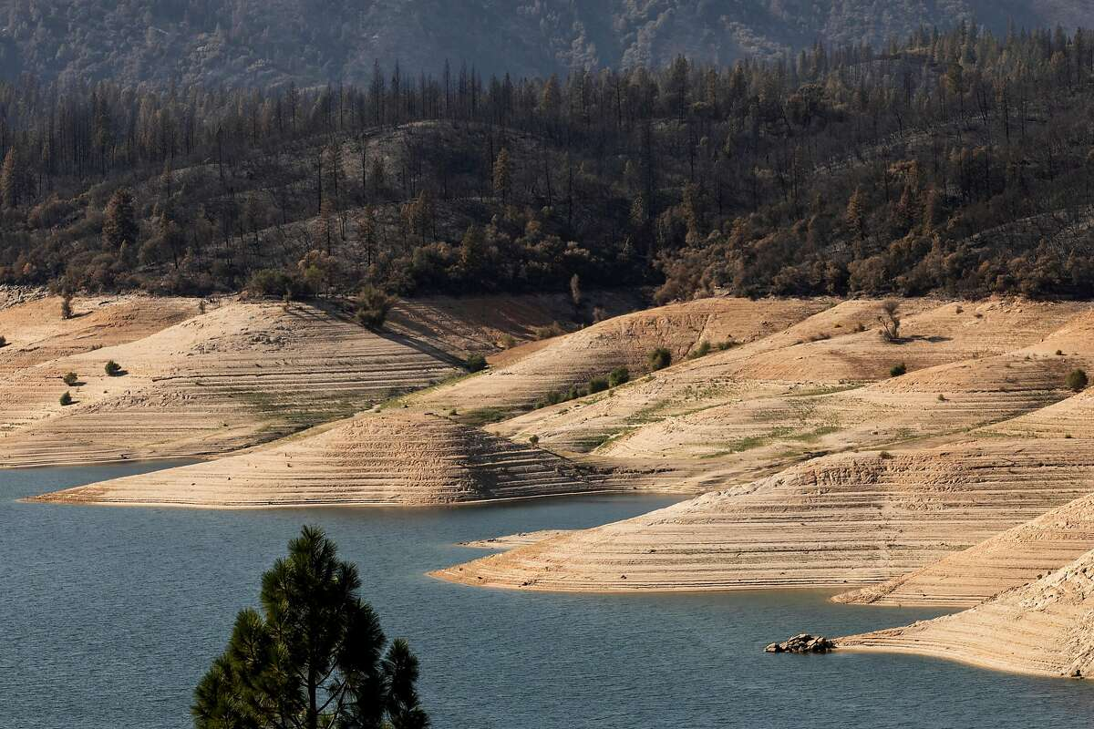 A line of charred trees sits above Lake Oroville seen from Lumpkin Road in Oroville, Calif. Thursday, September 24, 2020 as crews work to mop up areas in Oroville damaged by the Bear Fire.