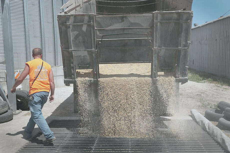 Michael Kuster unloads soybeans at a Ruff Bros. Grain elevator in Blackstone. Photo: Scott Olson | Getty Images