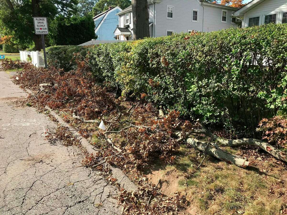 A pile of storm debris from Isaiais is photograph on Sept. 23, 2020 at the corner of Clearview Avenue and Cady Street in Stamford, Connecticut. The city may be getting FEMA money to clean things up from the tropical storm that wiped out power for a week for many Stamford residents, before the snow plows start coming.