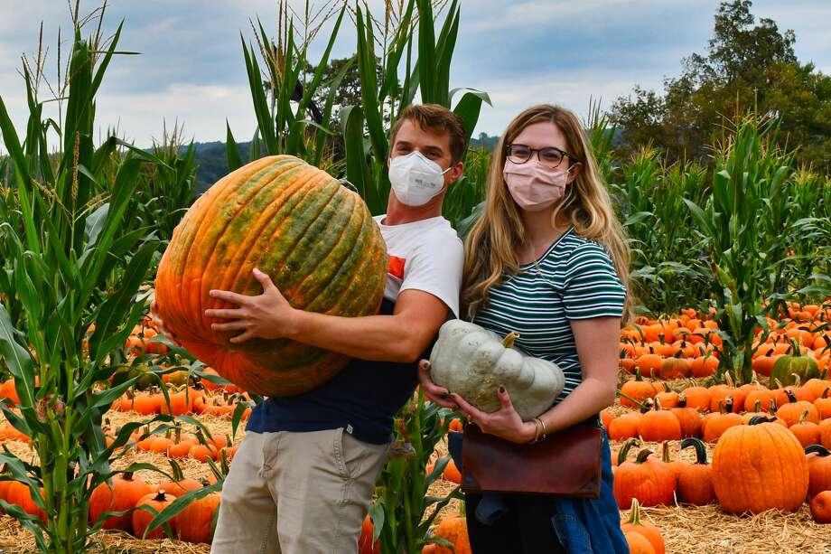Were you SEEN at pumpkin picking at Jones Family Farms on Sept. 26, 2020? Photo: Vic Eng / Hearst Connecticut Media Group