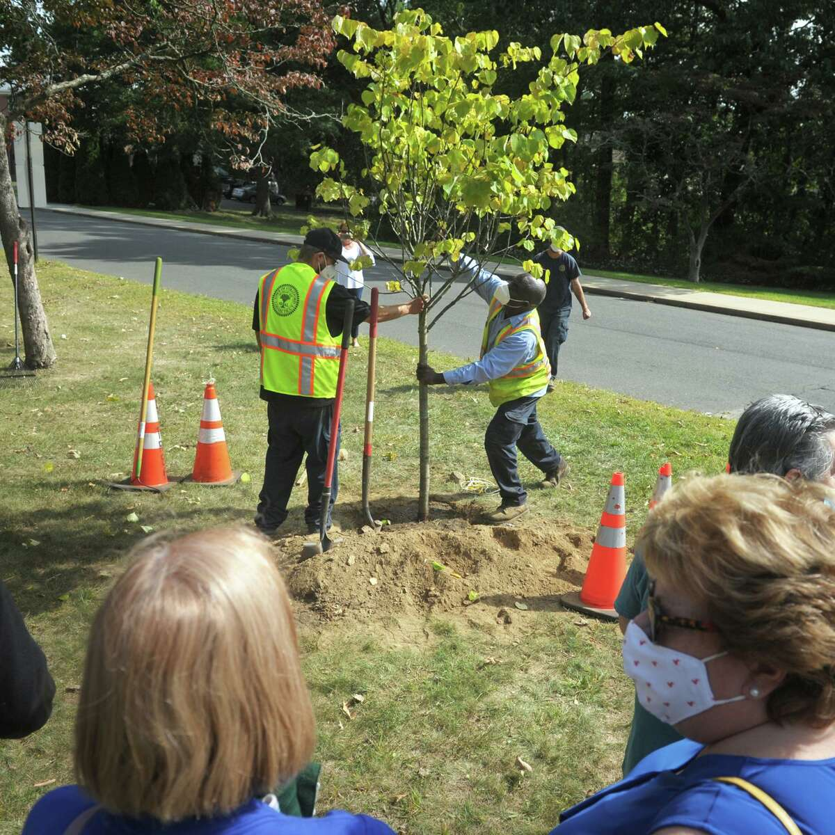 Members of the Bunnell High School Class of 1970 watch as a new eastern redbud tree is planted in front of the school in Stratford, Conn. Sept. 24, 2020. Members of the 1970 class gathered to plant the new tree to replace another tree originally planted on the first Earth Day in the spring of their graduating year.