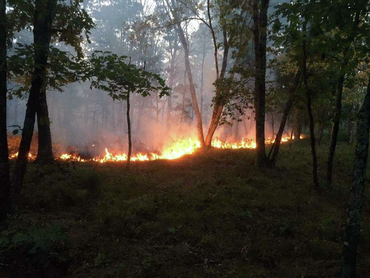 The Connecticut Department of Energy and Environmental Protection assisted North Windham, Windham Central, and South Windham Fire departments in containing a wildfire in Natchaug State Forest on Sept. 17, 2020.