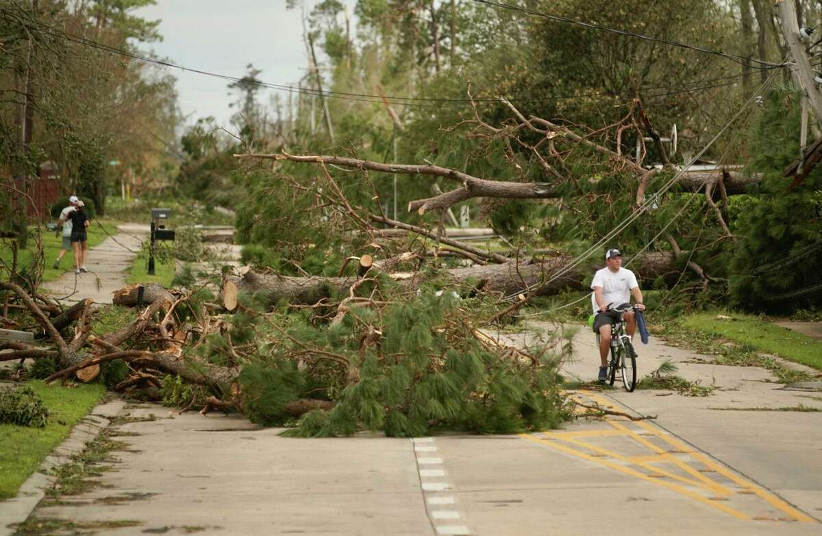 A man rides a bicycle among fallen trees along Holly Hill Rd., Thursday, Aug. 27, 2020, in Lake Charles, La., in the aftermath of Hurricane Laura. (Mark Mulligan/Houston Chronicle via AP)