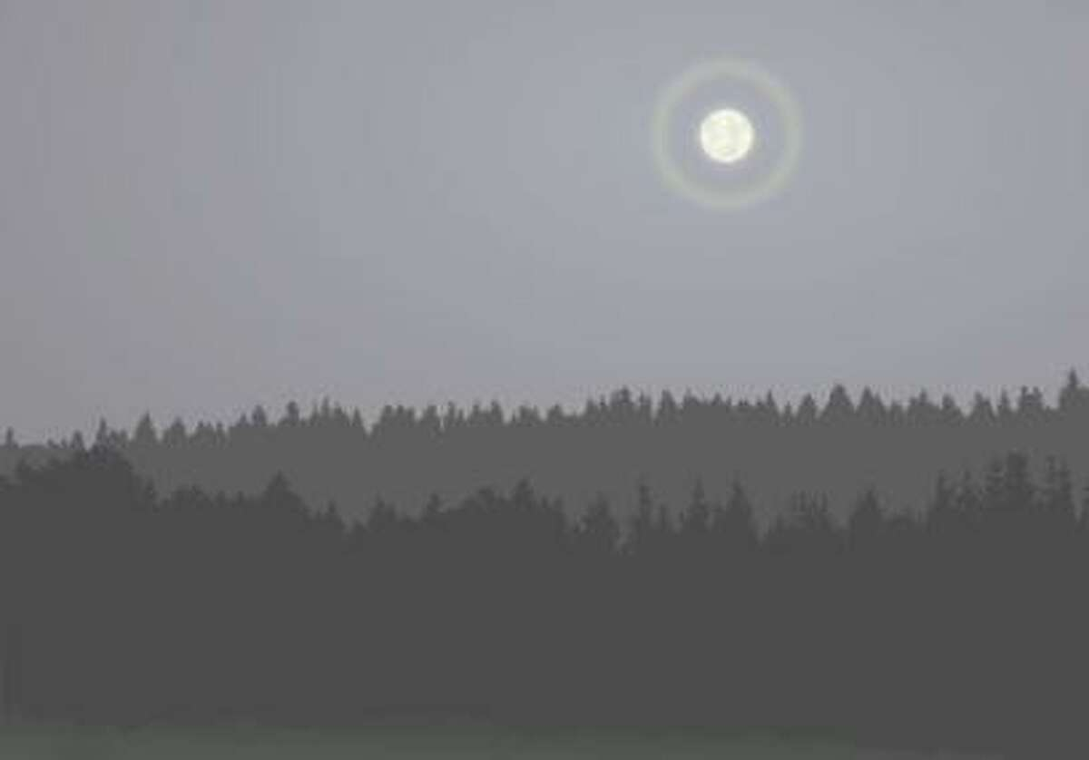 The Shelton Trails Committee is again hosting its annual moonlight hike beginning at 7 p.m. on Friday, Oct. 2, at Shelton Land Conservation Trust's Nicholdale Farm.