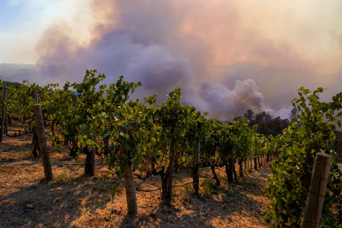 Firefighters look out towards the Bell Canyon Reservoir to contain the Glass Fire in Napa County at the Viader Vineyards & Winery on Sunday, Sept. 27, 2020, in Deer Park, Calif.