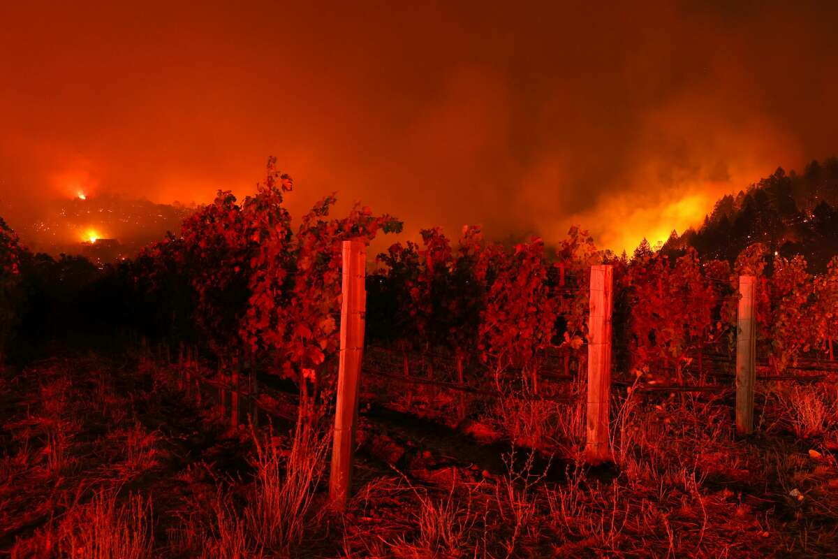 The Glass Fire burns in the hills behind a vineyard on September 26, 2020 in Napa, California. The fast moving Glass fire has burned over 1,000 acres and prompted evacuations. Much of Northern California is under a red flag warning for high fire danger through Monday evening.