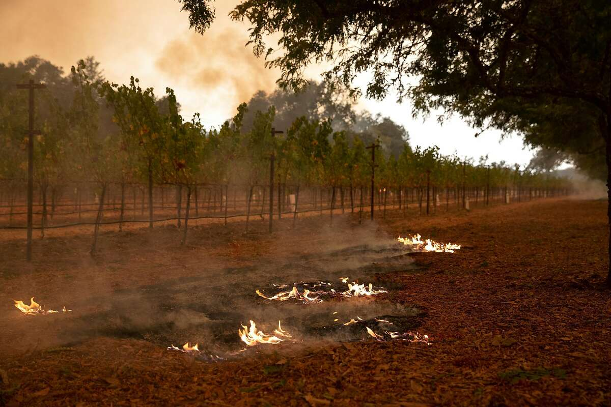 Flames from a small spot fire burn in front of vines during the Glass Fire at Sterling Vineyards in Calistoga, Calif. on Monday morning, Sept. 28, 2020.