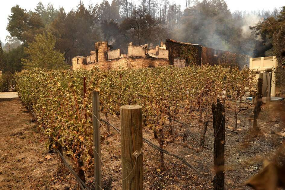 Fire damaged grapevines sit in front of the destroyed Chateau Boswell Winery after the Glass Incident Fire moved through the area on September 28, 2020 in St. Helena, California. The fast-moving Glass Incident, originally called the Glass Fire, has burned over 11,000 acres in Sonoma and Napa counties. The fire is zero percent contained. Much of Northern California is under a red flag warning for high fire danger through Monday evening.