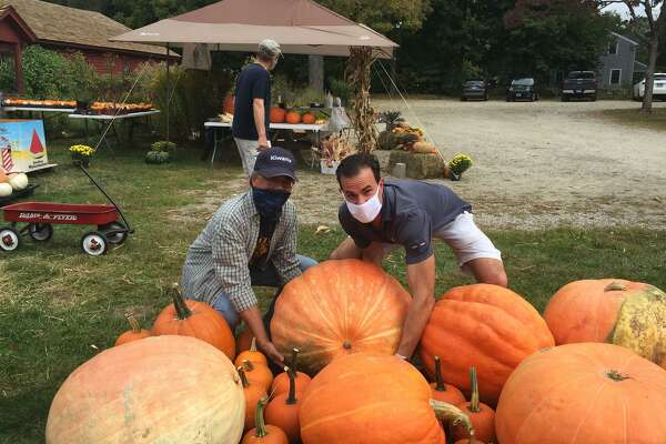 Gregg Chann and Vince DiLullo of the Wilton Kiwanis Pumpkin Committee, review the wide assortment of pumpkins they have for sale this year, including some that weigh around 100 pounds.